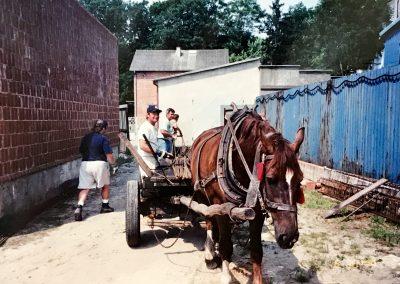 HorseCarriageSupplies